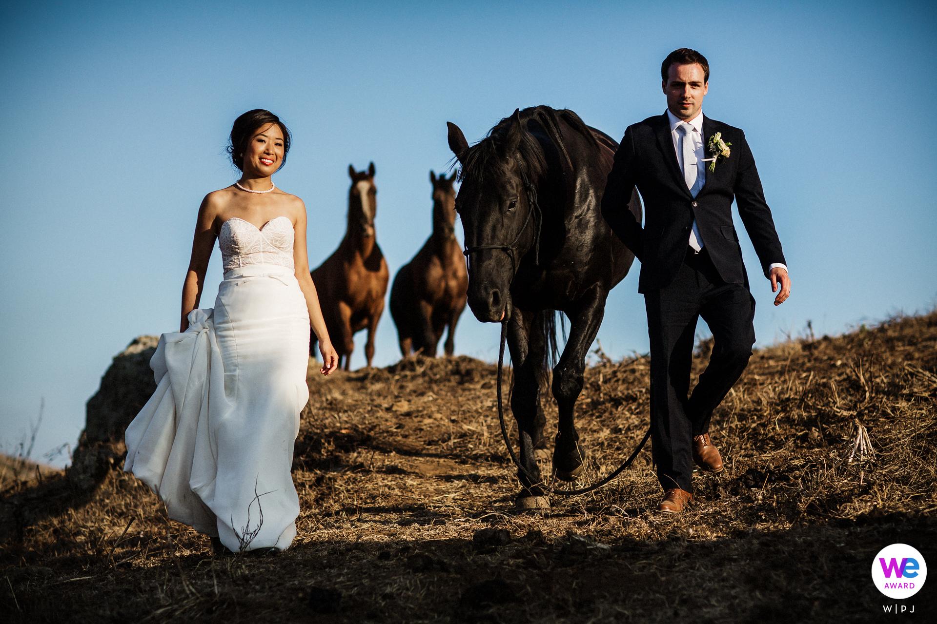 Danehill Manor, Nicasio Elopement Retrato con caballos | Los dos hermosos llevaron al equipo de bellezas por el rancho para dar un paseo tranquilo.