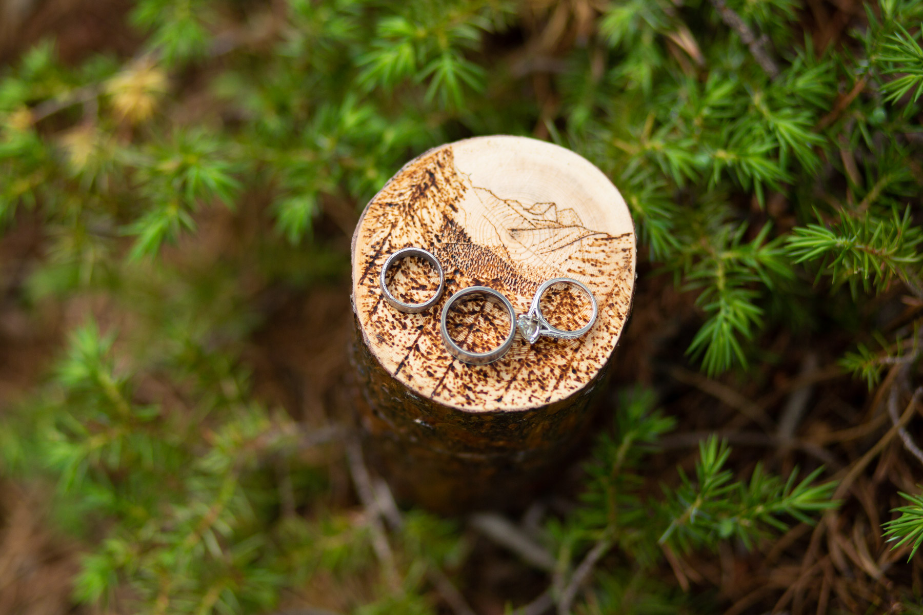 Nederland, CO Elopement Ring Detail Image   The couple engraved the mountain range that was visible from their back deck onto a hand made wooden ring box