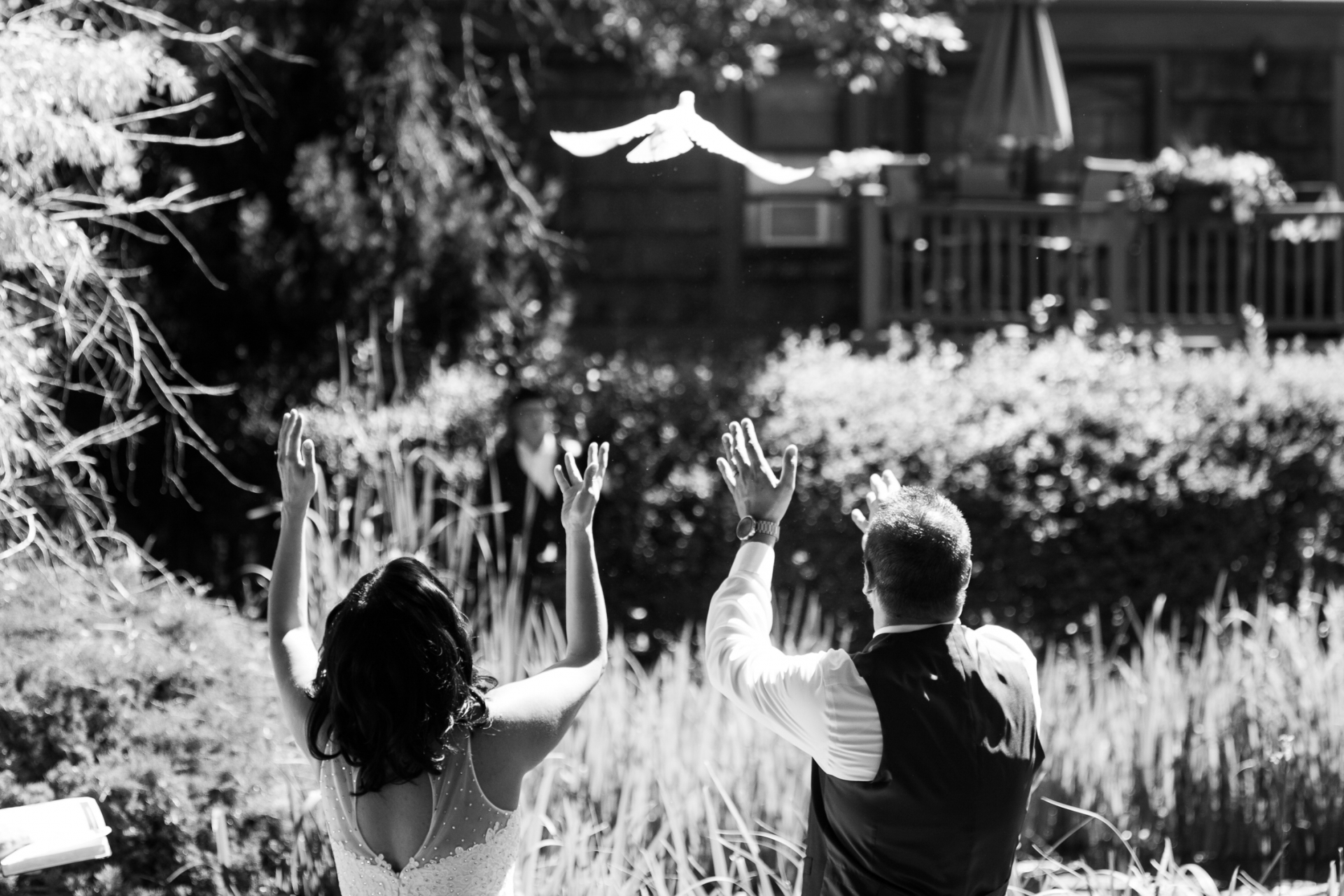 CO Backyard Wedding Ceremony Image - Outdoor Dove Release Image | the couple released a dove into the air