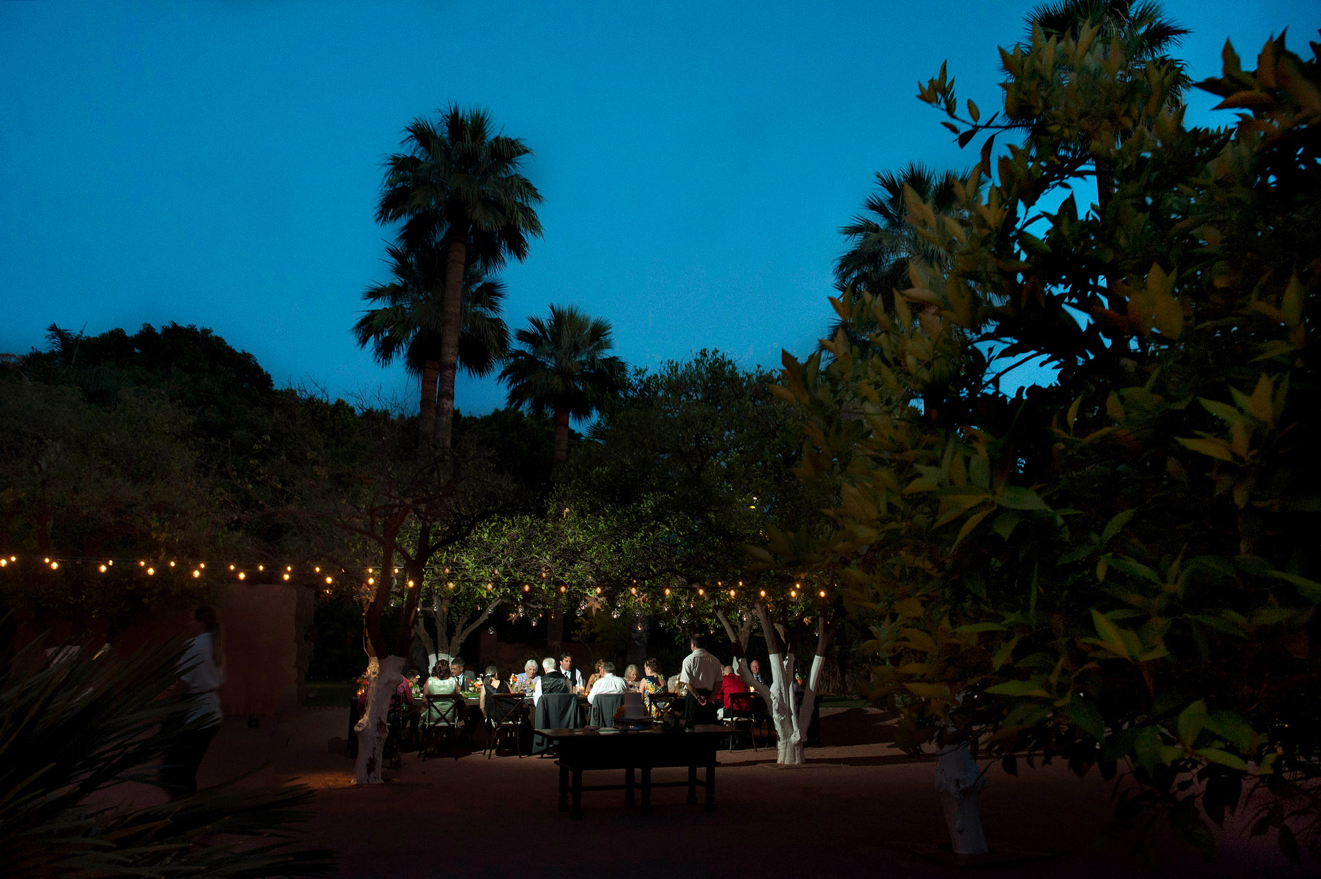 AZ Elopement Venue Picture | The private wedding dinner took place in an orange grove