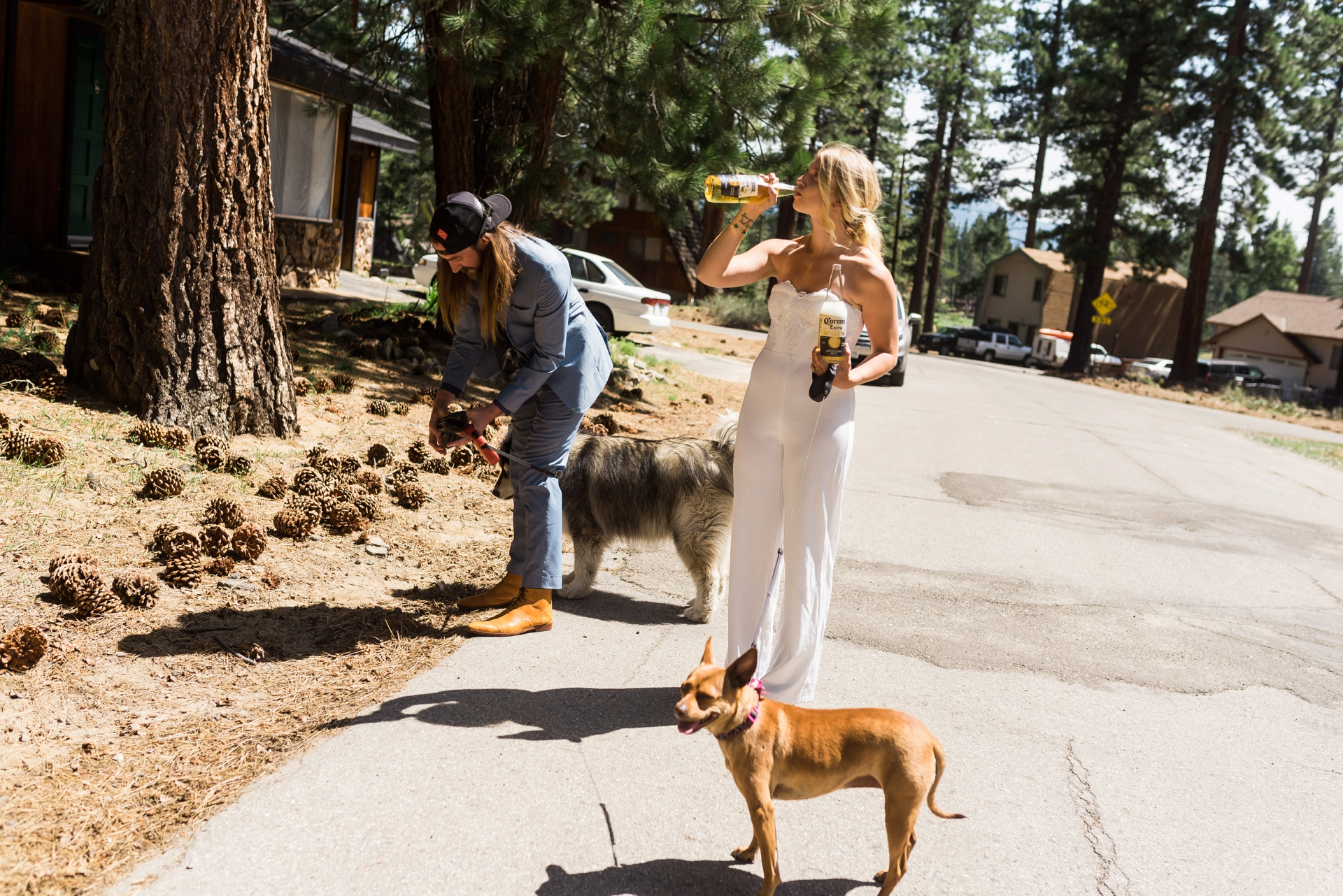 COVID-19 California Elopement Photography | Dog parent duties are never done, even on your wedding day