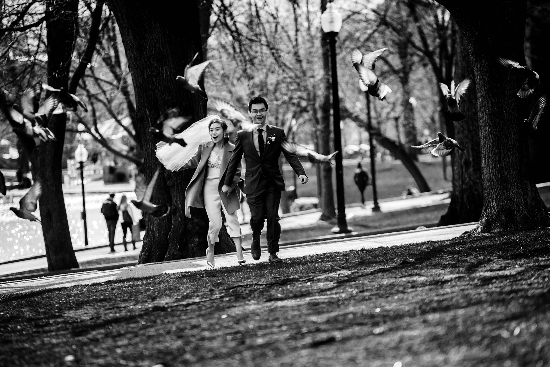 Boston City Hall Elopements - Boston, MA Elopement Photographer   Feeling lighthearted and carefree, the couple chased birds