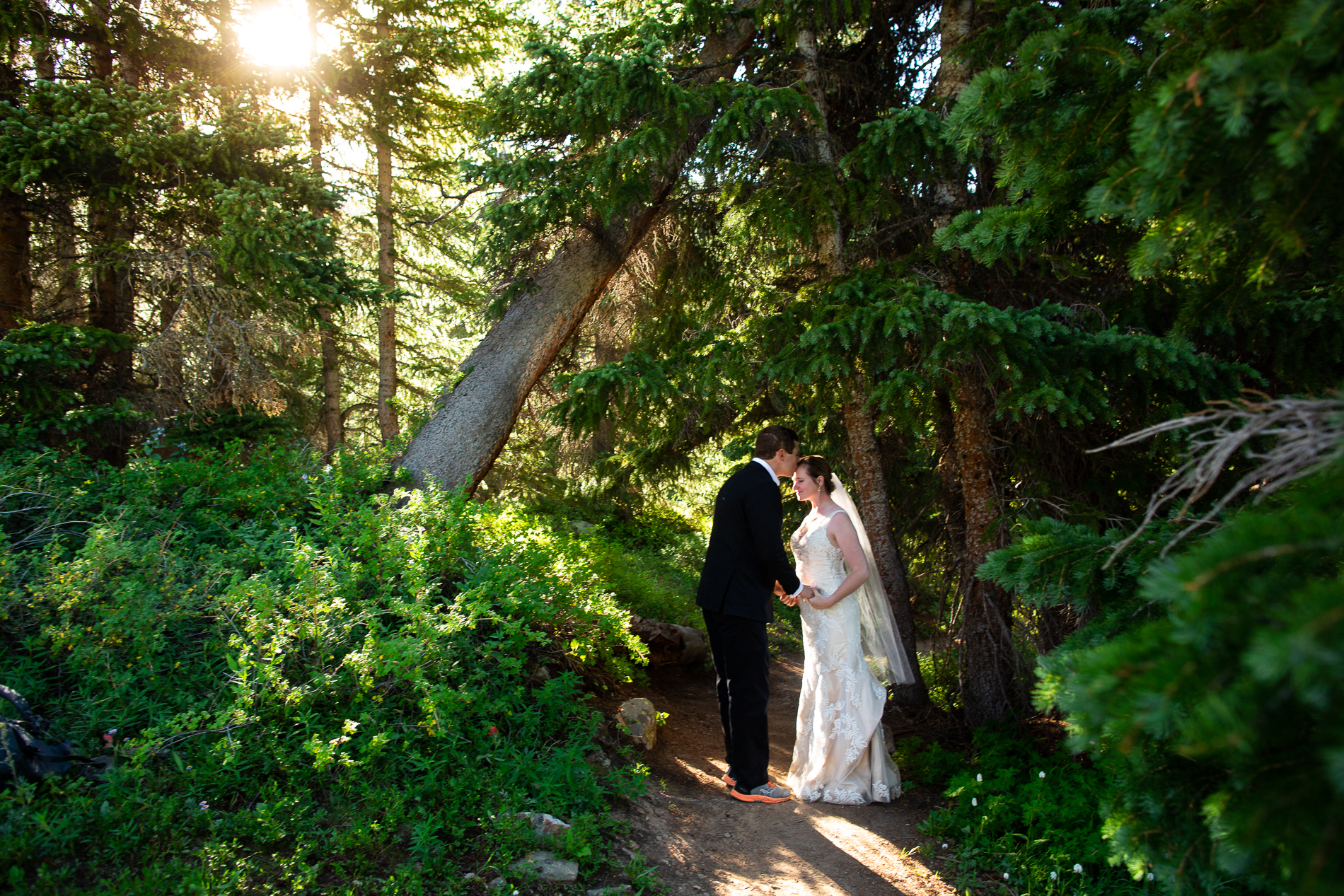 Boreas Pass Colorado Elopement Gallery of Images | the groom paused in the shifting rays of fresh sunlight to kiss his fiance's forehead
