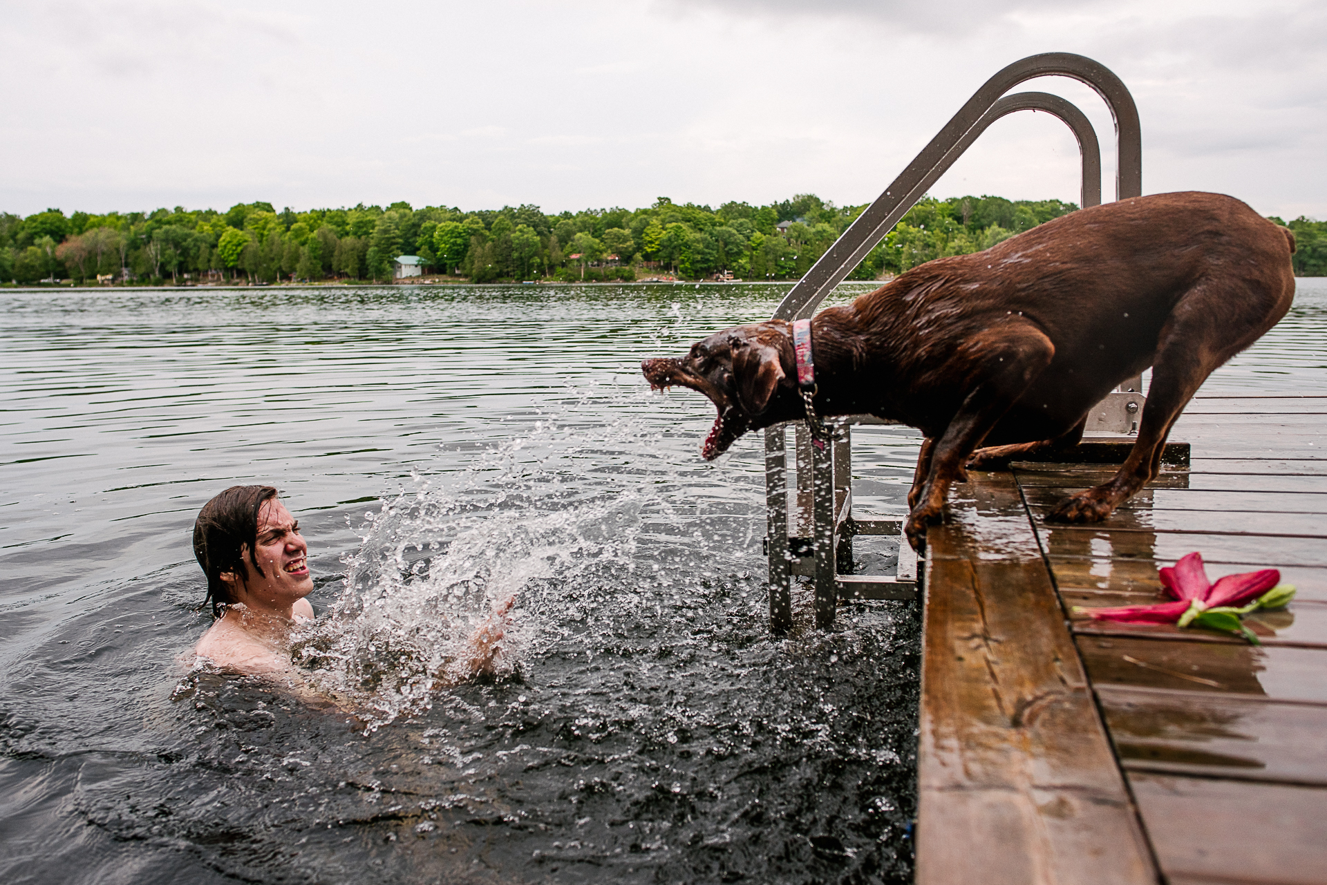 Professional Wedding Photography in Canada | a boy splashes a dog with water after the ceremony