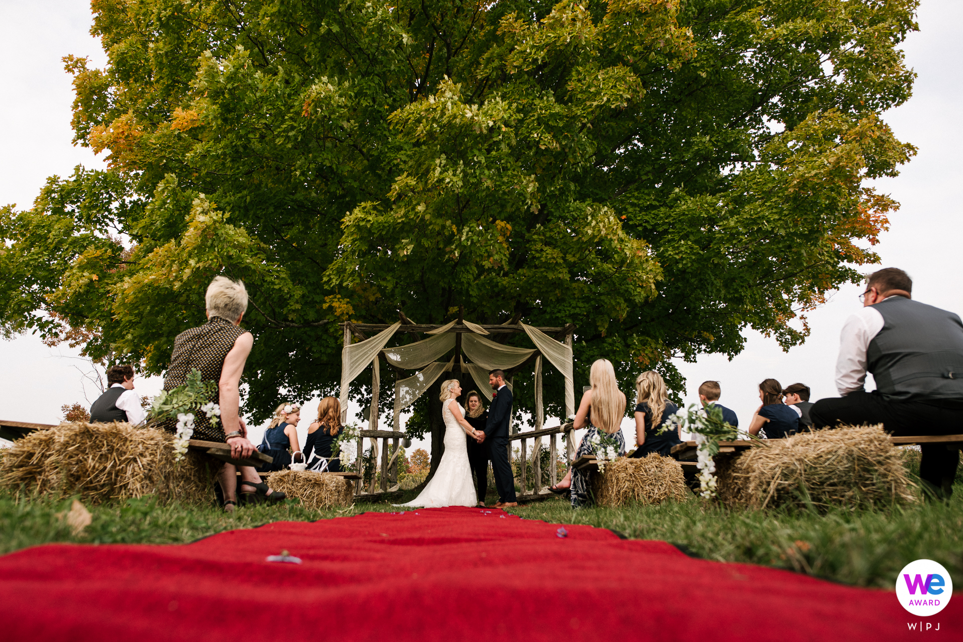 Versteckte Wiesen Hochzeitsfotografie | Braut und Bräutigam legen ihre Gelübde im Schatten eines weitläufigen Baumes ab