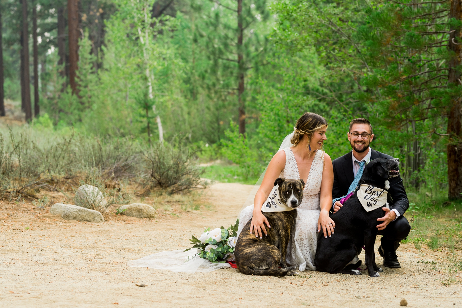South Lake Tahoe Wedding Portraits | A family image w/ their dogs
