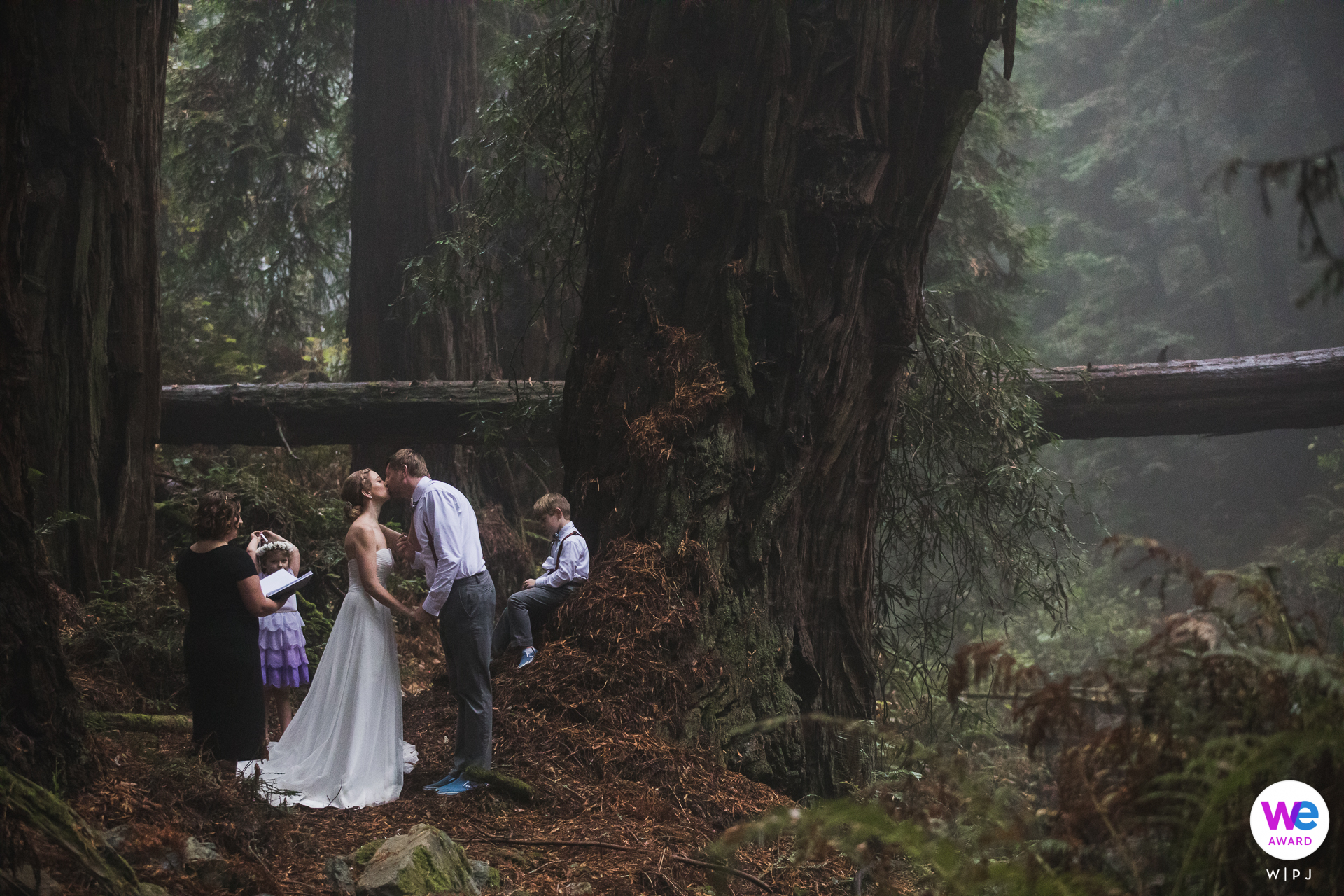Redwood forest at Mt. Tam, Stinson Beach in Marin County, CA Wedding Image | Ceremony site was in the middle of an incredible and massive redwood grove