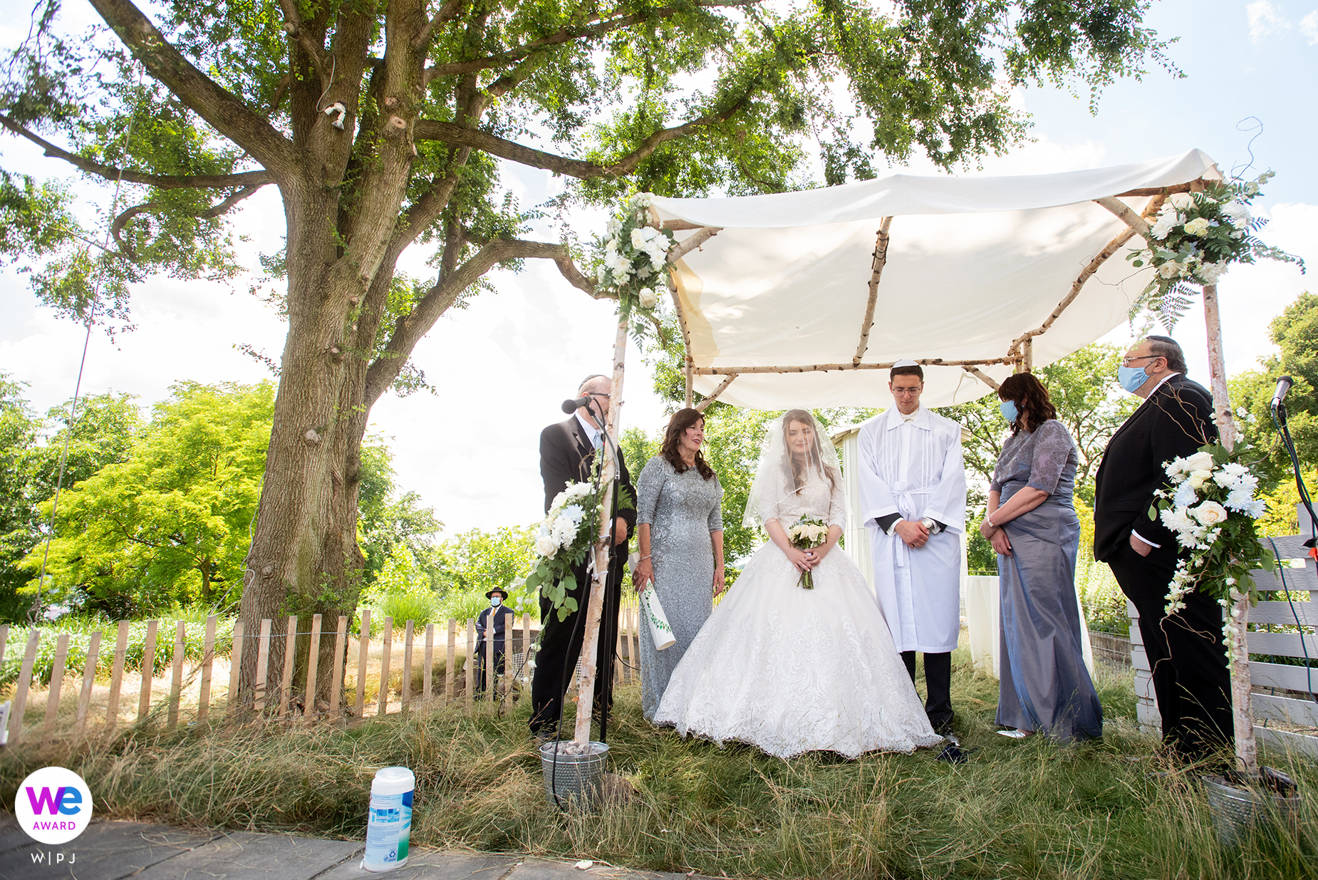 Wedding Photographer for Pittsburgh, PA | the branches of the tree gave the impression that it was embracing the chuppah