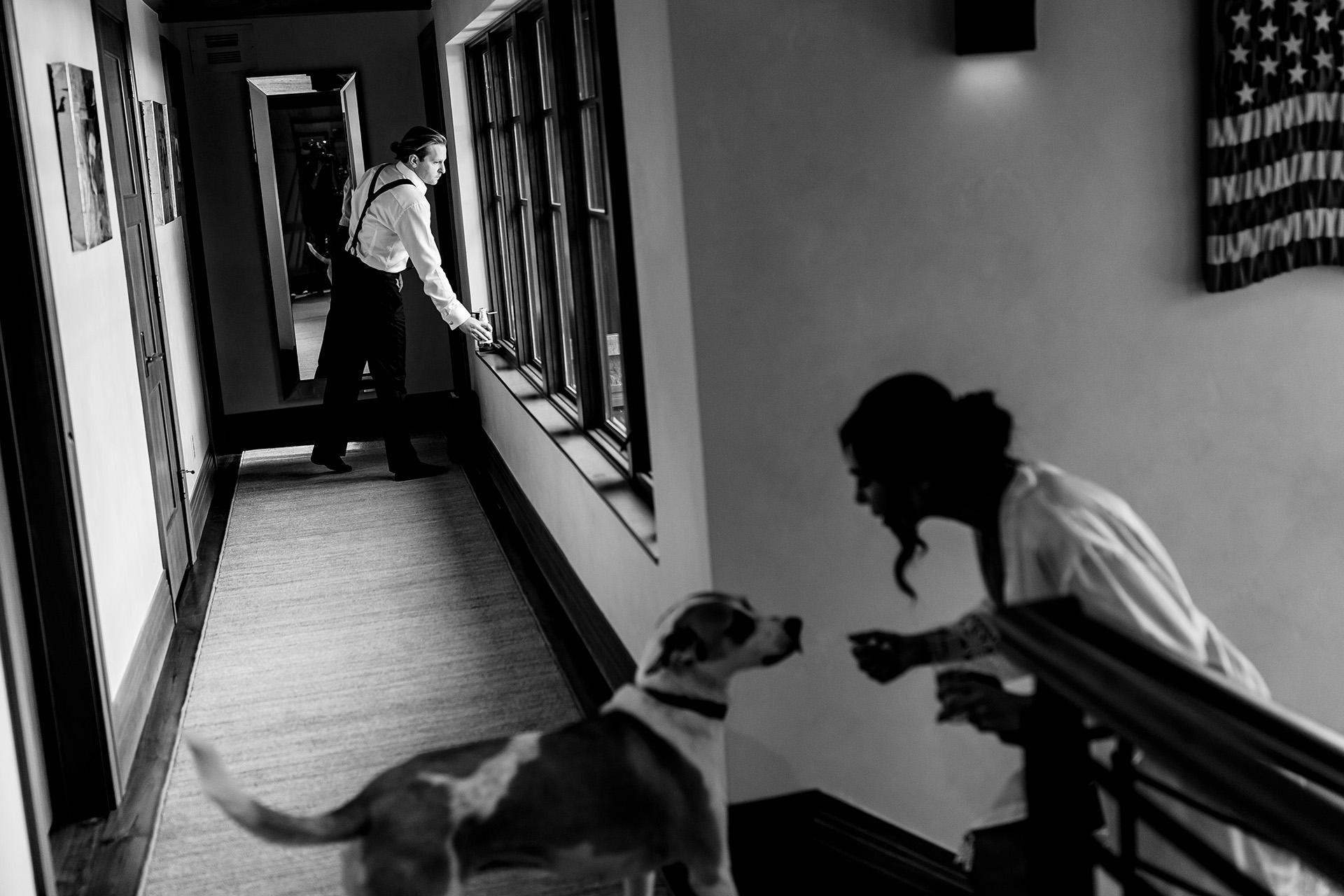 Photographes de mariage au Colorado pour Vail Resorts   La mariée prend un moment pour jouer avec le chiot