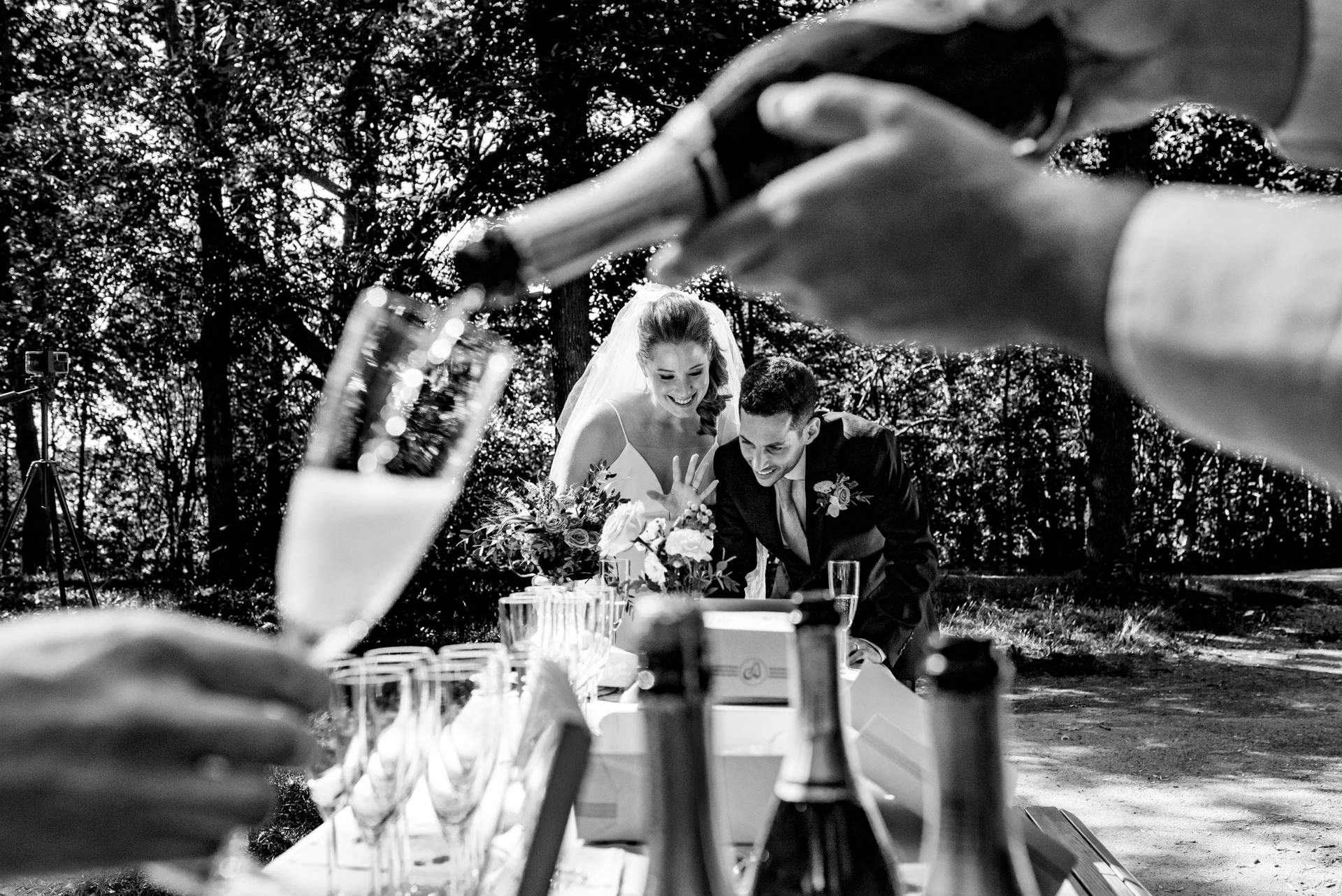Mount Royal Park, Montreal, Wedding Photographer | their guests enjoyed a bubbly toast