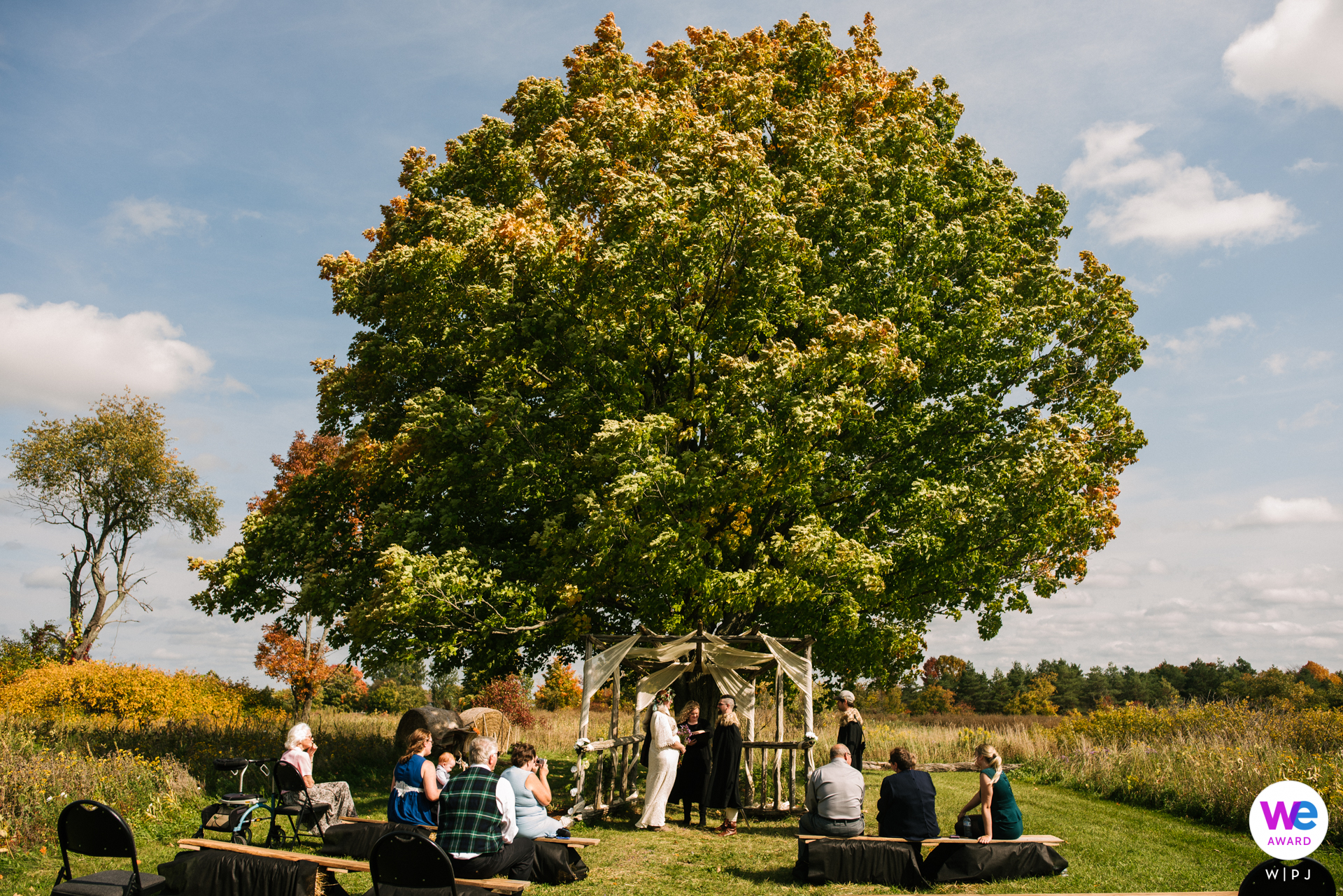 The Bee Spot Rural Family Farm - Tamworth, Ontario Wedding Image | Hidden Meadows Outdoor-ceremonie