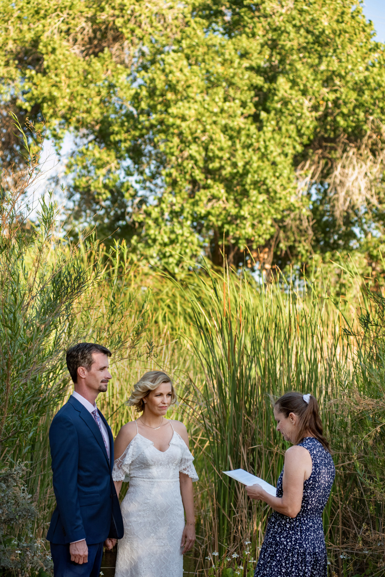 Desert Botanical Garden Wedding Ceremony Picture | Surrounded by tall grasses and illuminated by the warm glow of the Arizona sun