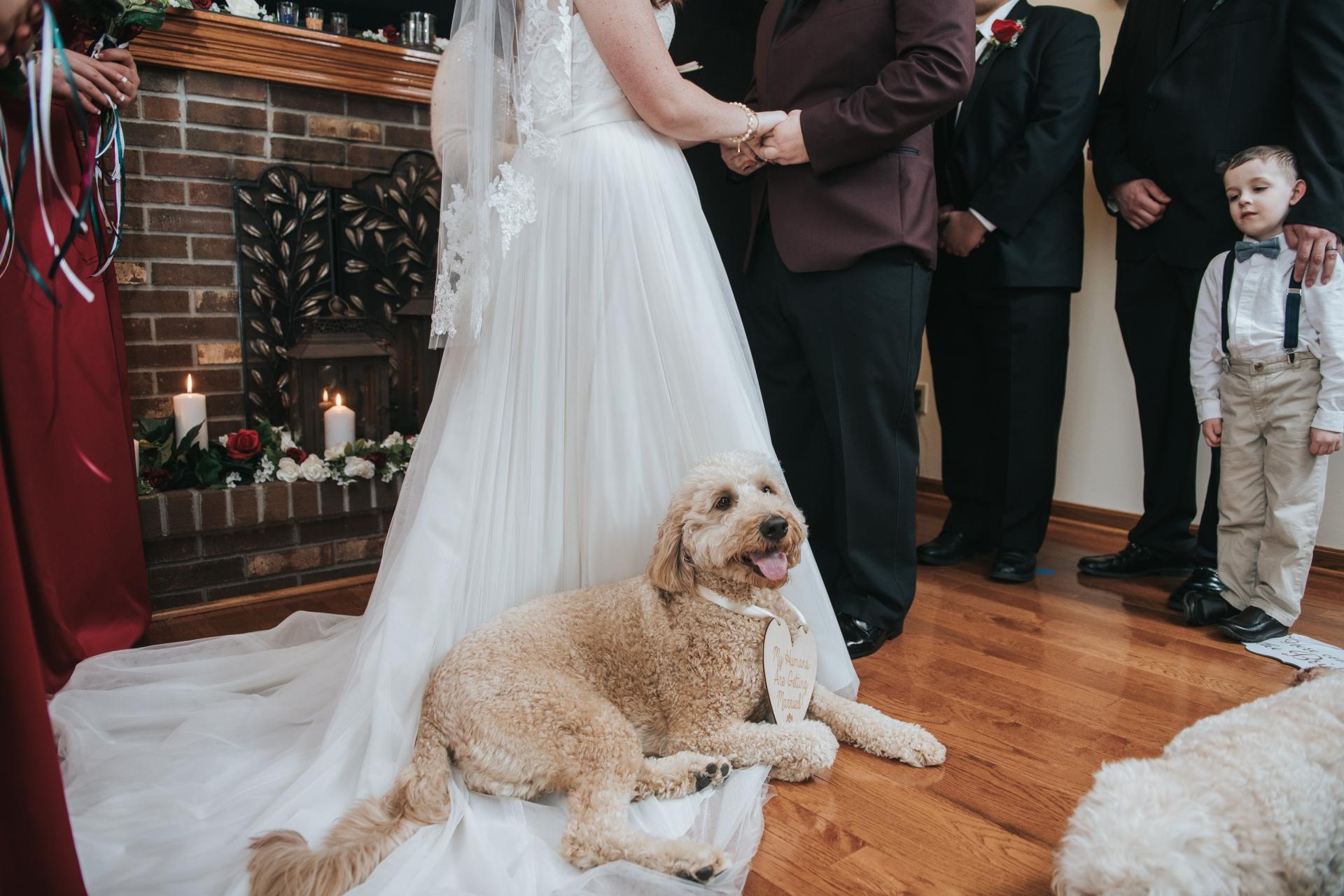俄亥俄州的Dennis Crider是私人住宅的婚礼摄影师
