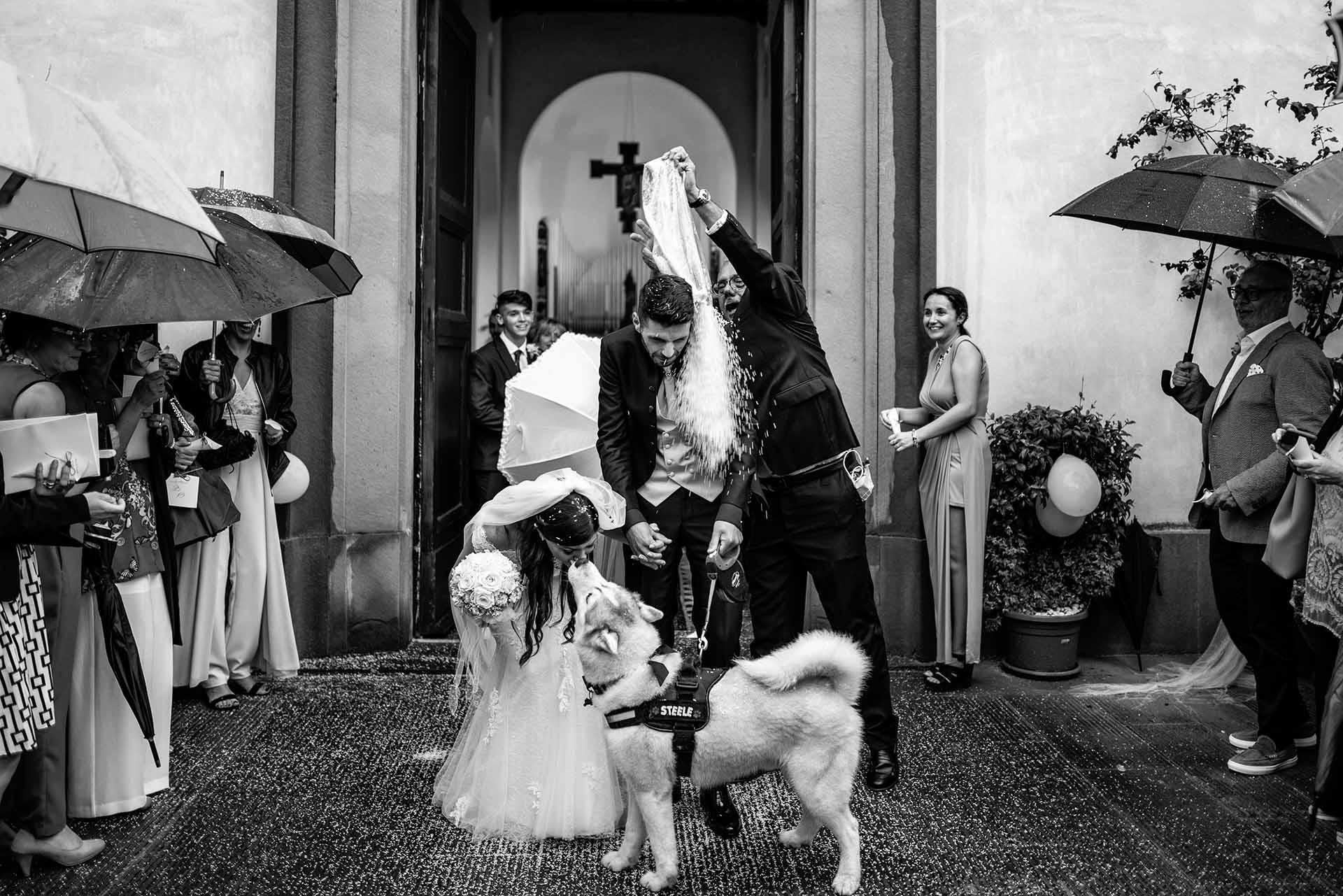 Massa-Carrara的Alessandro Colle是montespertoli的婚礼摄影师